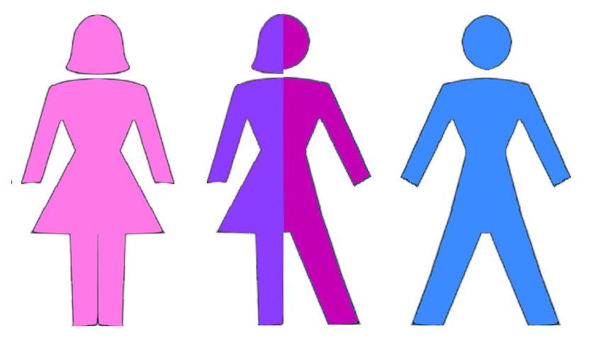 Tòa Hiến pháp Đức đã công nhận giới tính thứ ba. Hình minh họa: Internet